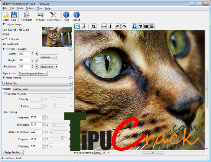 BenVista PhotoZoom Pro 7 Crack With Key Free Download