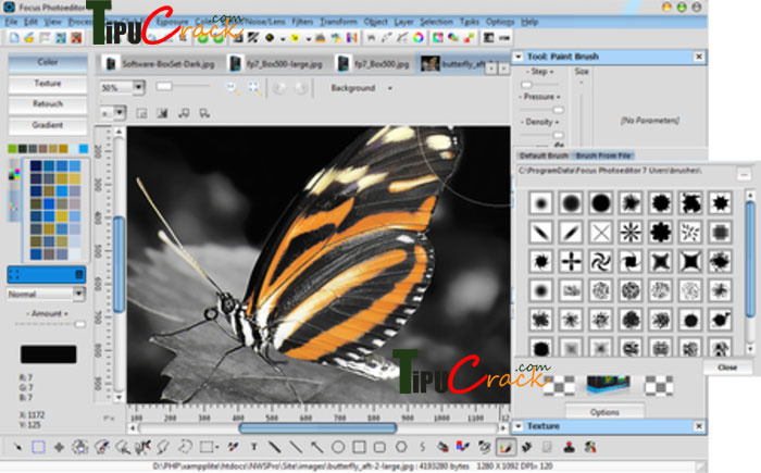 Focus Photoeditor 6.5.8.0 With Keygen Free Download