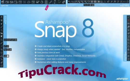 Ashampoo Snap 8 Crack With Serial Key Latest Free Download